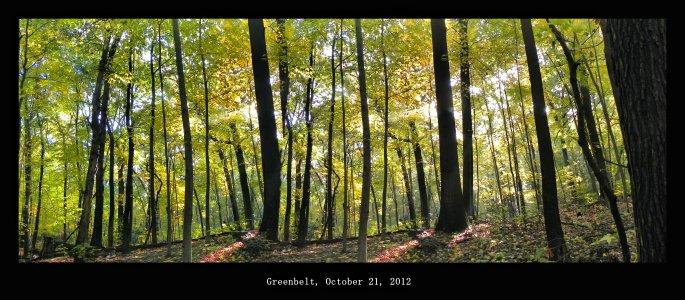 Greenbeltfall7