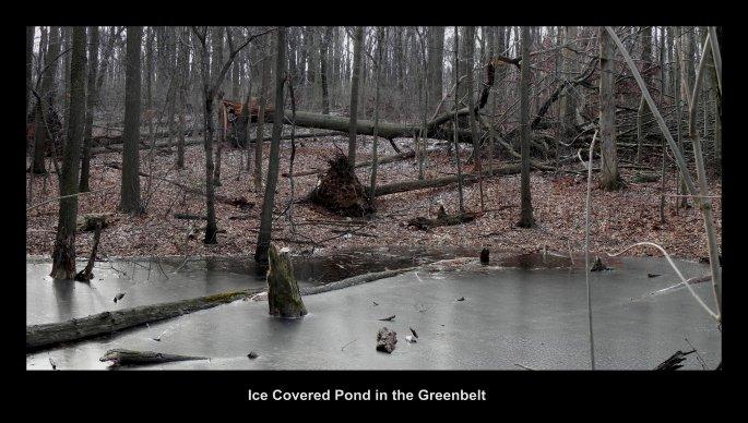 IceCoveredPondGreenbelt