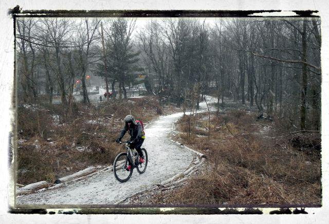 Greenbelt biker