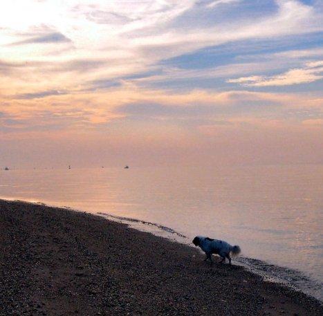 Day Break, Raritan Bay, Staten Island, NY