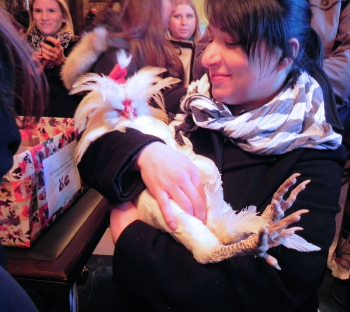 Girl with pet rooster taking it to church ceremony to get blessed by the Minister at Park Avenue Church in NYC.